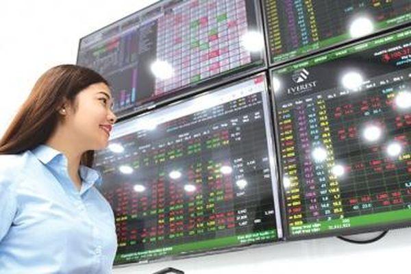 Phát hành cổ phần riêng lẻ: Đôi bên cùng có lợi
