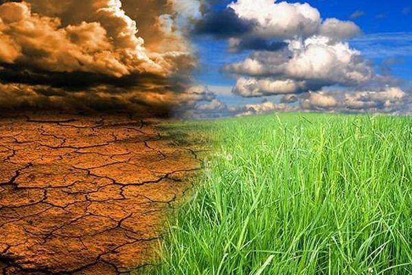Biến đổi khí hậu: Chiến lược gì để đối phó?