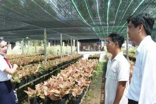 Nguồn vốn Agribank tạo sức bật mới cho làng hoa Sa Đéc
