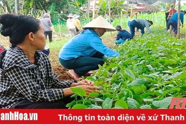 Đào tạo nghề gắn với xây dựng nông thôn mới ở huyện Lang Chánh
