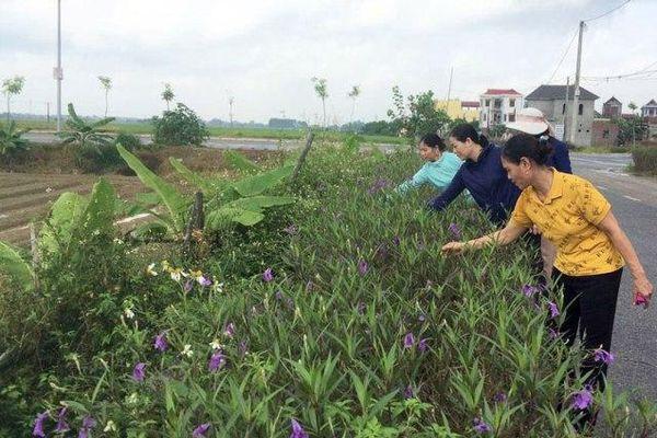 Bắc Ninh: Cho những làng quê xanh