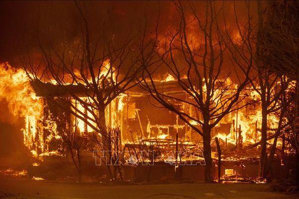Thế giới thiệt hại 187 tỉ USD do thảm họa trong năm 2020