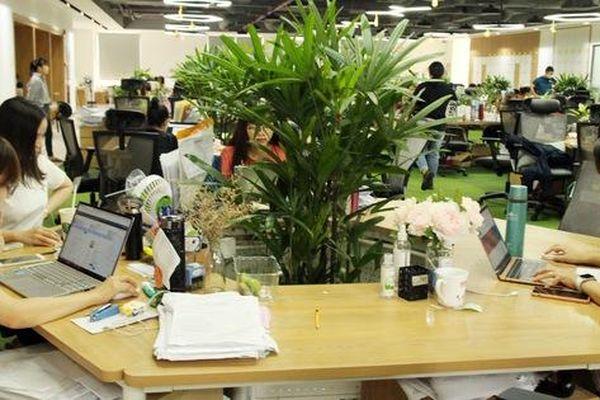 Cạnh tranh việc làm: Trình độ hay thái độ sẽ thắng?