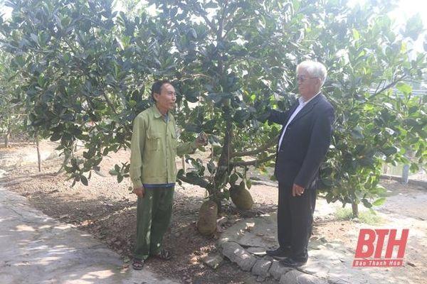 Hội Người cao tuổi TP Sầm Sơn phát huy vai trò tuổi cao - gương sáng