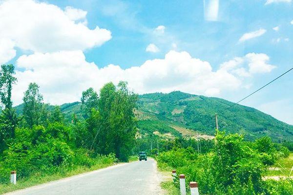 Xem xét điều chỉnh quy hoạch dự án Khu công nghiệp Nam Cam Ranh