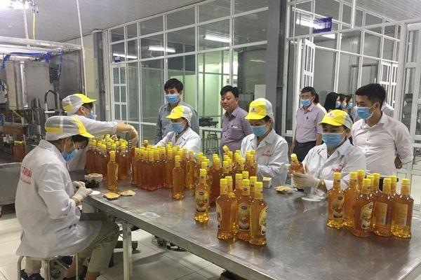 Khuyến công quốc gia giai đoạn 2021 – 2025: Tạo đột phá cho sản phẩm công nghiệp nông thôn