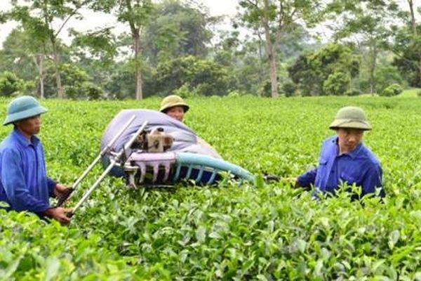 Các yếu tố tác động đến ứng dụng công nghệ vào sản xuất nông nghiệp