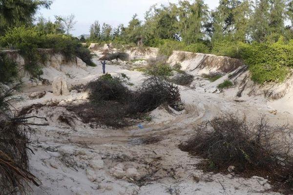 Ninh Thuận chỉ đạo xử lý việc khai thác cát trái phép theo phản ánh của Báo Pháp luật Việt Nam
