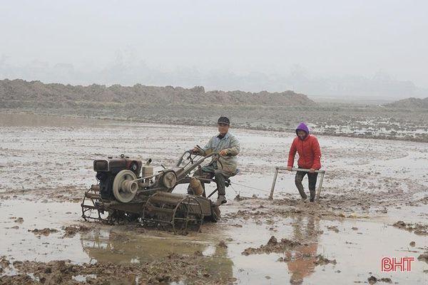 Vượt lên giá rét, người dân Hà Tĩnh nỗ lực duy trì lao động, sản xuất