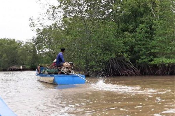 Cà Mau: Phát hiện 2 thi thể người dưới kênh