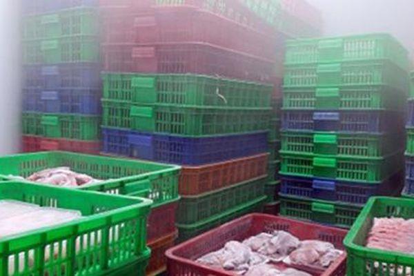 TP.HCM: Phát hiện gần 6 tấn thực phẩm không rõ nguồn gốc