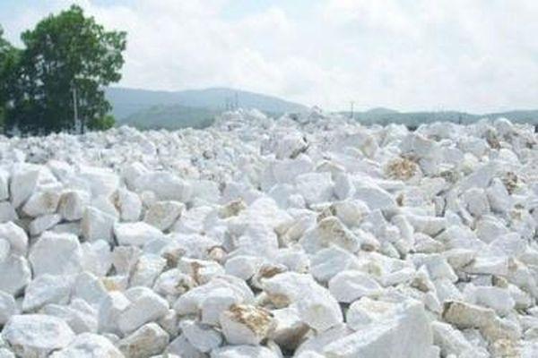 Tổng cục Hải quan thông tin về vướng mắc của doanh nghiệp xuất khẩu đá vôi