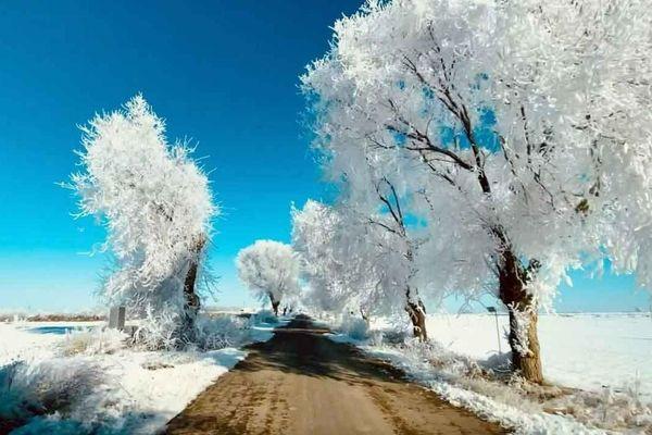 Con đường tuyết trắng dưới trời âm 16 độ C ở Tây Ban Nha