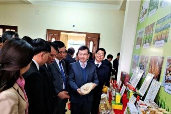 Tuyên Quang: Chú trọng tái cơ cấu nông nghiệp, nâng tầm các sản phẩm chủ lực