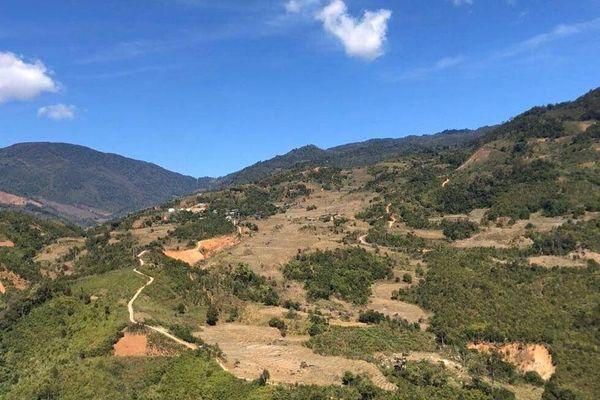 Yêu cầu rà soát, loại bỏ thủy điện nhỏ có chiếm dụng rừng tự nhiên