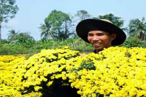 Đồng Tháp tri ân, tôn vinh những người trồng hoa