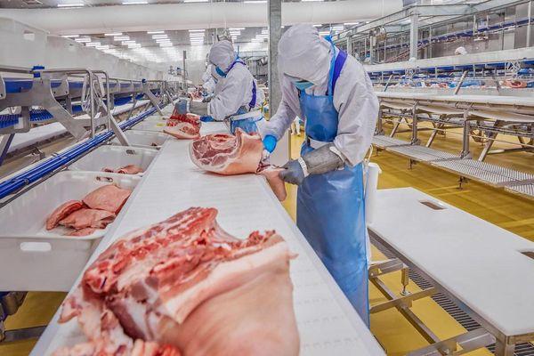 Tết Tân Sửu, giá thịt lợn sẽ không tăng đột biến