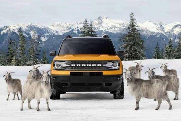 Ford dùng dê núi để quảng bá cho công nghệ đi mọi địa hình