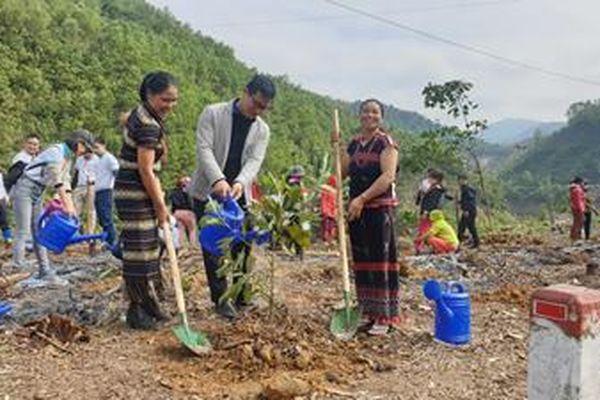 Bộ Tài nguyên và Môi trường thực hiện chương trình trồng cây góp quỹ một tỷ cây xanh