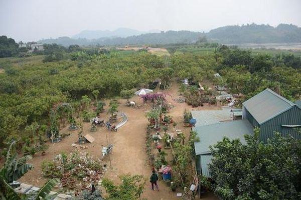 Tuyên Quang: Gần 3.000m2 đất TP Tuyên Quang thu hồi là của người dân khai phá
