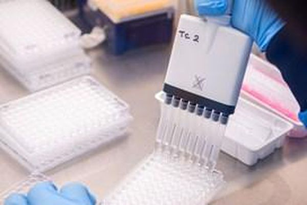 WHO cảnh báo tình trạng bất bình đẳng khi tiêm vaccine ngừa COVID-19