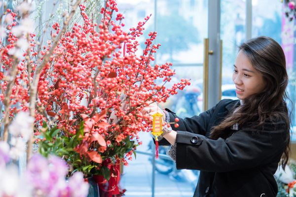 Cập nhật nhanh giá 6 loại hoa ngoại hot nhất trên thị trường