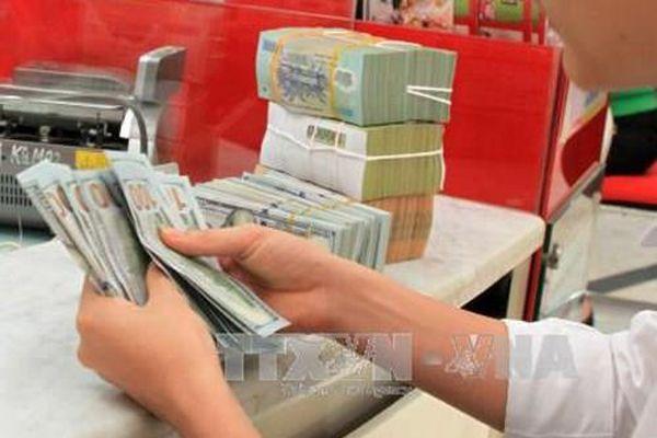 Bamboo Capital 'rót' thêm khoảng 180 tỷ đồng vào Tracodi