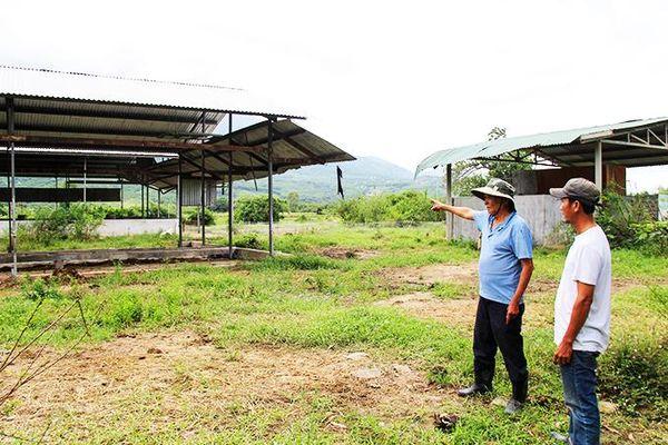 Tranh chấp đất ở xã Ninh Hưng: Cần kiểm tra lại nguồn gốc đất