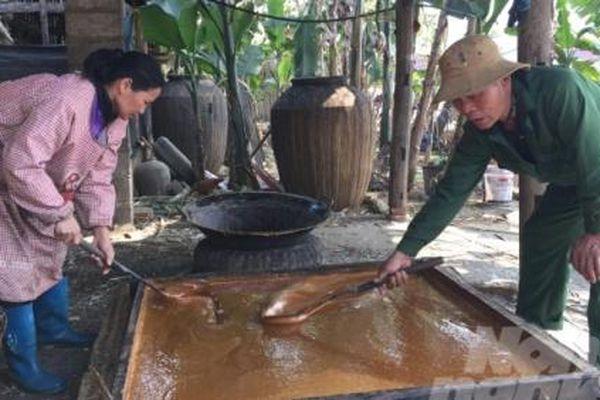 Nghề làm đường phên ở Cao Bằng khởi sắc nhờ giống mía mới