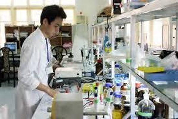 Xác định hàm lượng Borate (hàn the) trong thực phẩm bằng phương pháp đo phổ phát xạ nguyên tử cảm ứng cao tần plasma (ICP - OES)