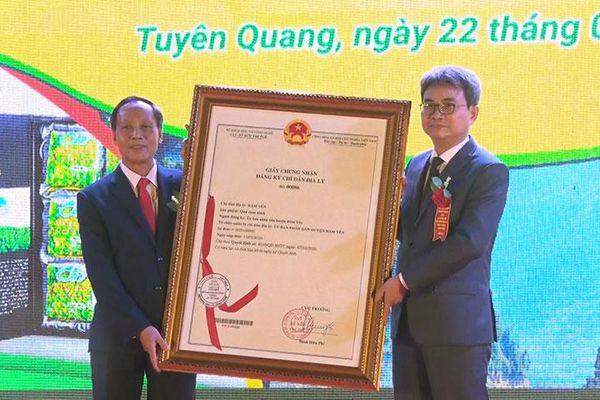 Công bố chỉ dẫn địa lý Cam sành Hàm Yên
