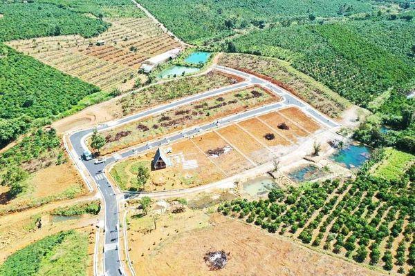 Công an vào cuộc điều tra vụ phân lô bán đất nông nghiệp ở Bảo Lộc