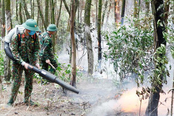 Phòng, chống cháy rừng: Không thể chủ quan