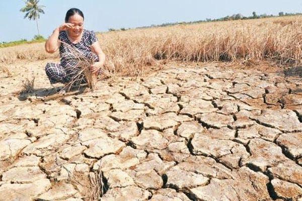 Chương trình hành động của Chính phủ tiếp tục ứng phó với biến đổi khí hậu