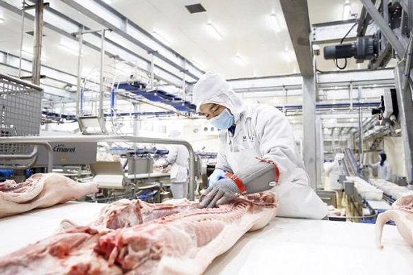 Tập đoàn AVG của Nga đầu tư khu chế biến thịt lợn 1,4 tỷ USD tại Thanh Hóa