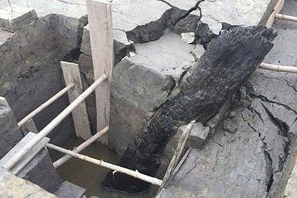 Phát hiện thêm bãi cọc cổ hơn 2.000 năm tuổi