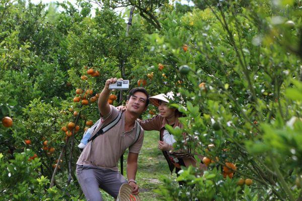 Khách nườm nượp đổ về vườn quýt hồng Lai Vung và làng hoa Sa Đéc