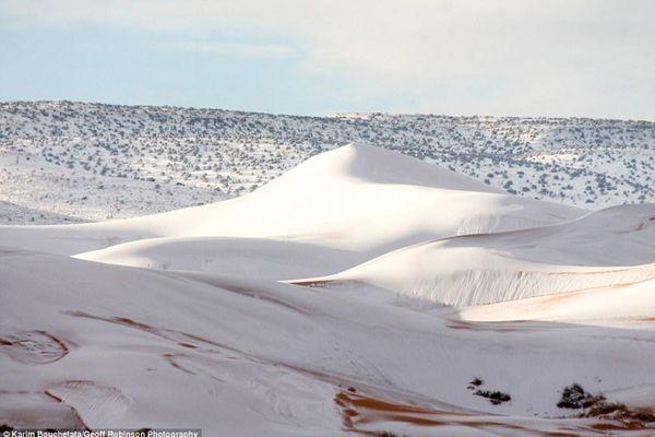 Chuyện lạ: Tuyết rơi phủ trắng một vùng sa mạc Sahara