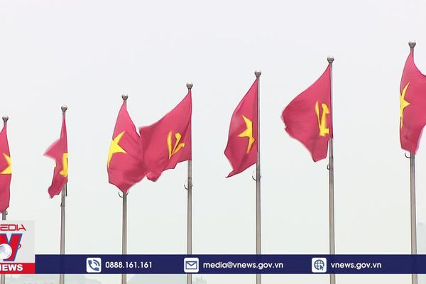 Kiều bào các nước hướng về Đại Hội Đảng XIII