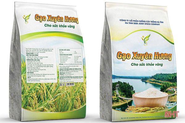 Gạo Xuyên Hương Hà Tĩnh - nâng tầm thương hiệu gạo Việt