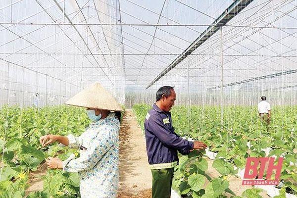 Đảng bộ xã Thọ Thanh chú trọng nâng cao chất lượng sinh hoạt chi bộ