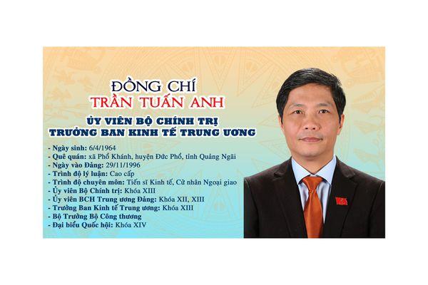Infographic: Tiểu sử Trưởng ban Kinh tế Trung ương Trần Tuấn Anh