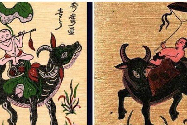 Hình ảnh trâu Việt - xưa và nay
