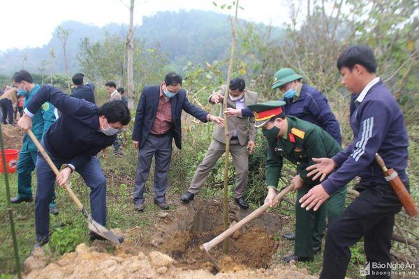 Con Cuông trồng hơn 2.000 cây xanh đầu Xuân Tân Sửu
