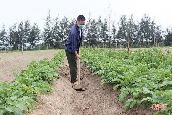 Nông dân Thạch Hà hứng khởi ra đồng đầu năm mới