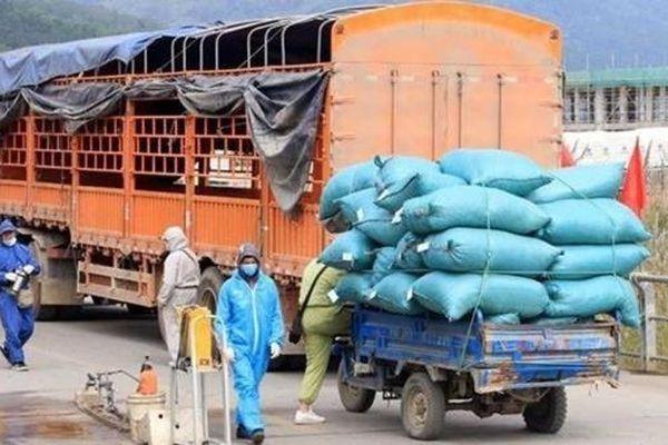 Bộ Công Thương đề nghị tháo gỡ tiêu thụ nông sản của Hải Dương
