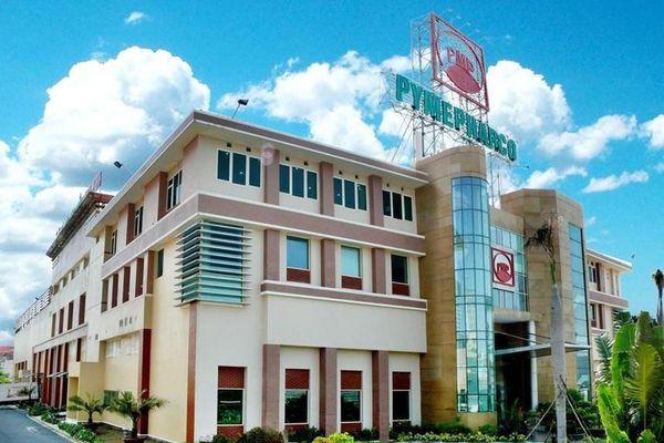 Stada Service Holding B.V đăng ký mua 1,1 triệu cổ phiếu Pymepharco (PME)