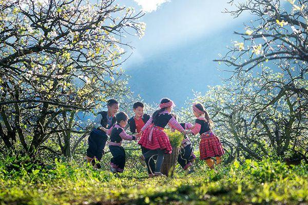 Mùa hoa Vân Hồ