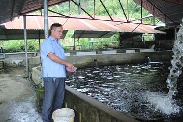 Xây bể, dẫn nước nuôi cá ở vùng biên