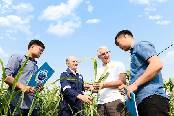 Nông dân làm giàu trên mảnh đất quê hương từ chăn nuôi bền vững